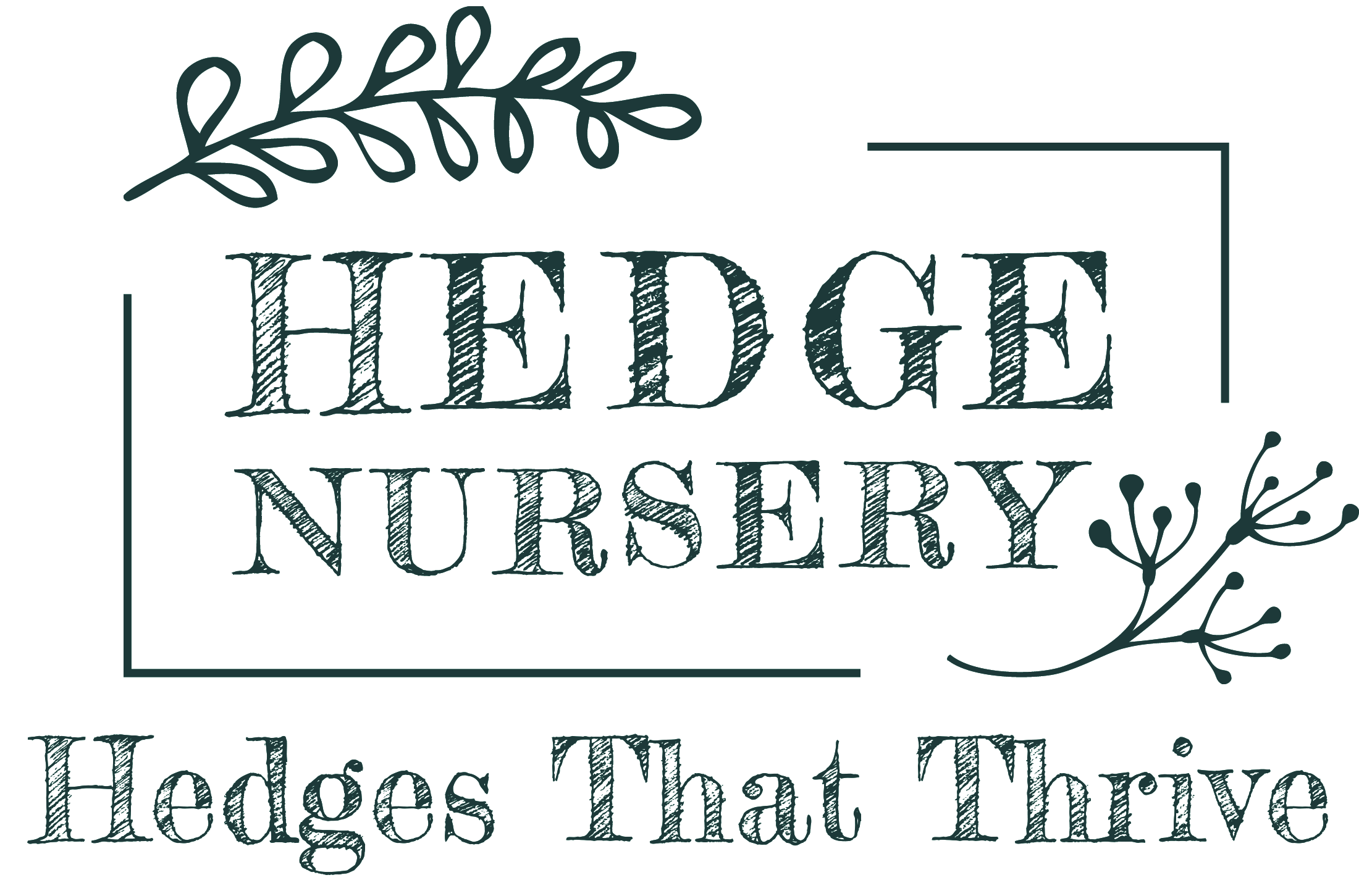 Hedge Nursery