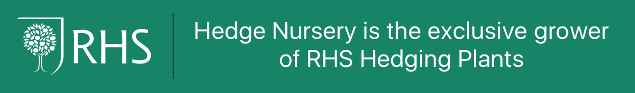 Exclusive grower of RHS Hedging Plants